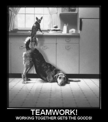 teamwork - working together